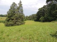 Beautiful acreage at a great price close to Westlake