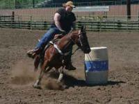 2000 AQHA Mare: Twister is one of the best horses I