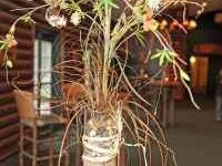 I have several of these beutiful rustic table center