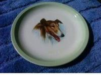 This is a vintage RARE Collie Dog Plate that looks like