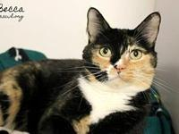Becca's story Hi, I'm Becca! I'm a beautiful lady in