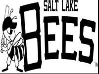 I am selling by Bees season tickets for tonight's game.