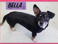Please complete our application at: sweet Bella/MS is