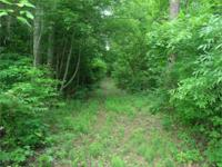 Wall to wall hardwoods on this 58.85 acre deer hunter's