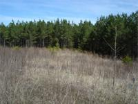 93 acres located in Polk County Tennessee near the town