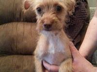 Bess's story Bess is a sweet tiny little girl ready to