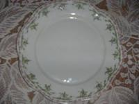 Z S & Co Mignon Bavaria China. Pink Roses w/ Green Ivy.