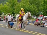 10 yr old APHA palomino tovero mare. Very Pretty face,