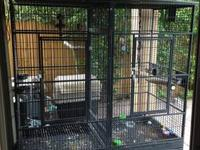 I have a used bird cage that can be used for any time