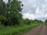 Koochiching County Lot 1 20 Acres with Road Frontage,