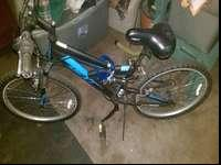 Bike for sale $30 obo needs a new front rim and back