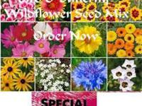 """Bird & Butterfly"" Wildflower Seed Mix, Order now & get"