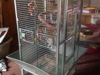 Nice bird cage with toys, bowls and play rack on top.