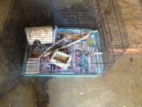 I have a bird cage complete set up for a few parakeets,