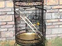 Very Nice well built bird cage . Made of wrought iron ,