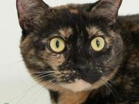 My story Birdie is a fun loving, independent girl