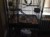 Trenton area. 2 parakeets and love bird. Need new