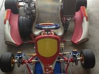 FOR SALE IS A BIREL KART WITH A ROTAX DD2 ENGINE, THE