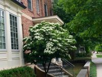 Luxury newer townhome with superb downtown location.