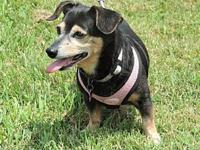 BITSY's story Sweet Bitsy is the total package.  A