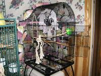 Black bird cage. Easy to assemble. 37HX23WX22D living