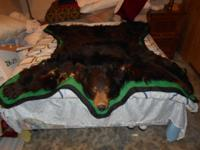Small sized black bearskin side hanging pelt mounted on