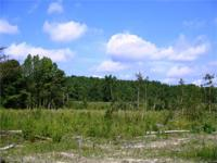 This 6 acre tract is located on Gaffney Ferry Road in