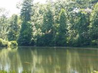 Lake Nottely area Property offers waterfront ponds,