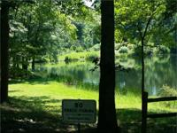 1 acre for $15,900 Lake Nottely area Property offers