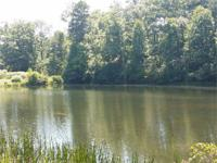 1.03 Acres for $14,900 Lake Nottely area Property