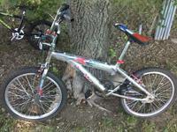 Two BMX Xgames bikes for sale $40 each .....good shape