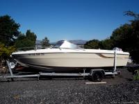 Regal  19 Foot with a 115 hp Evinrude outboard