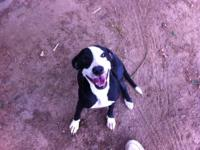 Hi, This is Debi w/Prue Humane Society ***Come Join Us