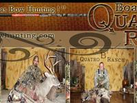 ****special for 2012.... ADD ON 1 of axis doe, red stag
