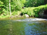 TROUT BROOK FOREST - WOODED ACREAGE use 622 acres and