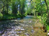 Year-round fly fishing & wildlife watching on 20 acres