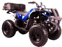 THESE ARE BRAND NEW 250CC YOUTH ATVS 4-WHEELERS