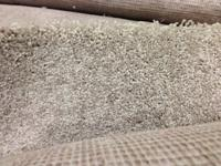 We have approx. 1200 sq ft of BRAND NEW carpet readily