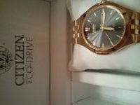 Brand New, never worn citizen eco drive mens watch.