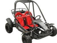 THESE ARE BRAND NEW 110CC 2-SEATER GO-CARTS 799.99 THEY
