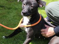 Breezy is such a cutie-pie; this petite girl needs a