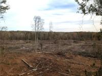 35.7 acres +/- of land for sale in Brent, Bibb County,