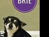 Brie's story You can fill out an adoption application