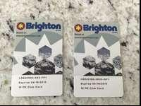 2 Brighton Go passes with 4 days left on each pass. $25