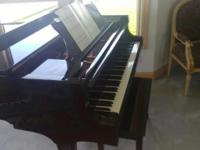 "Brodmann Grand Piano 5'6"" In excellent condition."