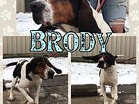 Brody's story Brody is an awesome boy! He has tons of