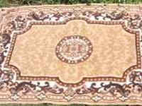 I have a brown and tan area rug in used condition. I