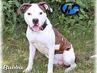 Bubba's story Make sure you let us know you saw Bubba