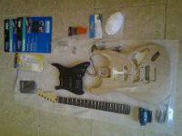 I'm selling my Fender Stratocaster Project I started