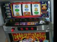 This is a real cute Bulldog Slot Machine. It barks when